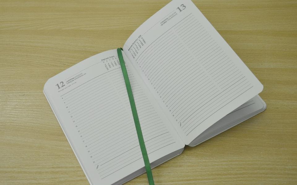 діловий щоденник з лясе